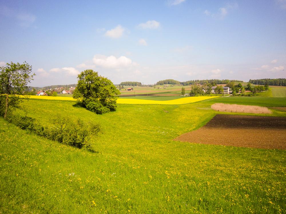 Fruehlingsritt-2010-11